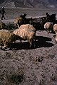 Françoise Foliot - Afghanistan 091.jpg