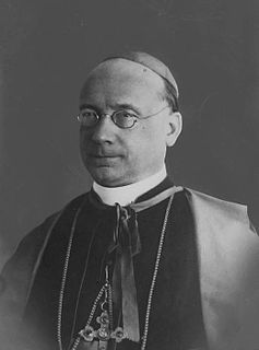 Francesco Marmaggi Catholic cardinal