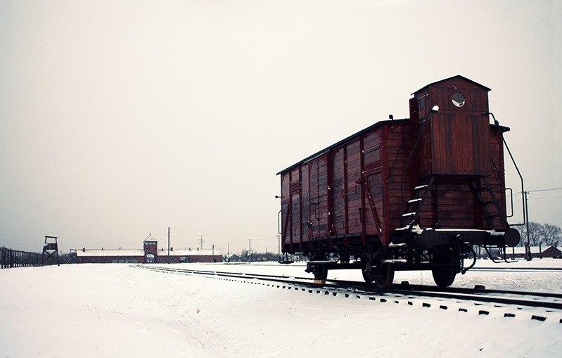 Freight car, Auschwitz II-Birkenau, 2014