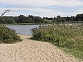 Frensham Little Pond - panoramio.jpg