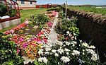 Front garden IMG 1291 (14541472007).jpg