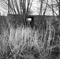 Fundering om Hoge molen - Streefkerk - 20206540 - RCE.jpg
