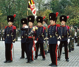 Bearskin - Bearskins worn by the modern Belgian Grenadiers