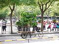 Gardener bike.jpg