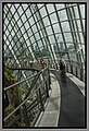Gardens by the Marina Bay - Dome Clouds 02 (8353158536).jpg