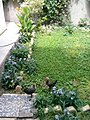Gardens in Baghdad 65.jpg