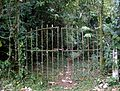 Gateway to theRainforest - Flickr - gailhampshire.jpg