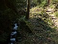 Gelobtbachtal, údolí Klopotského potoka - panoramio (38).jpg