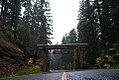 Gifford Pinchot National Forest.jpg