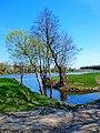Gmina Konstantynów, Poland - panoramio (4).jpg