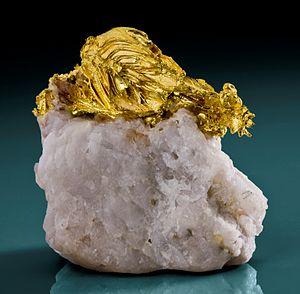 Mount Bullion, Mariposa County, California - Gold on quartz, Mockingbird Mine near Mt. Bullion