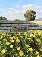 Paul Walker - Wikipedia