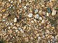Gravel texture.jpg