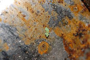 Green Paint Splash Fragments on the Other Locations of No.1 Torpedo seq-01b (DSC 0017).jpg