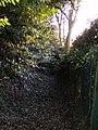 Greenleighs Path - geograph.org.uk - 1076557.jpg