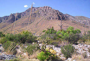 Guadalupe Mountains mit Guadalupe Peak (Bildmitte)