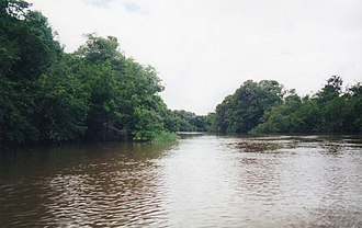 Los Llanos (South America) - Image: Guaraticoriver