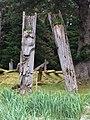Gwaii Haanas National Park (27554368785).jpg
