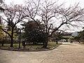 Gyeongbok-gung(place) (15).JPG