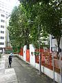 HK 上環 Sheung Wan Sunday Morning 華里 Wa Lane Lascar Court wall trees n visitors Aug 2016 DSC.jpg