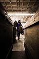 Handmade cigar production. Manufacture worker. Tabacalera de Garcia Factory. Casa de Campo, La Romana, Dominican Republic.jpg