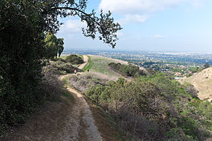 Puente Hills - View of Whittier from the Puente Hills.
