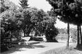 Helsinki Kaisaniemi Freemason's grave 1908 I K Inha.png