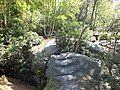 High Rocks on top 4117.JPG