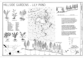 Hillside Gardens - Lily Pond - Marsh-Billings-Rockefeller National Historical Park, 54 Elm Street, Woodstock, Windsor County, VT HALS VT-1 (sheet 12 of 19).png