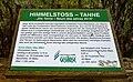 Himmelstoß-Tanne 01.jpg