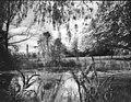 Holly Spring Hostel overgrown ornamental pond - geograph.org.uk - 1036390.jpg