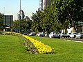Hot Summer days ( 40 C - 104 F ),Tehran - panoramio - Behrooz Rezvani (2).jpg