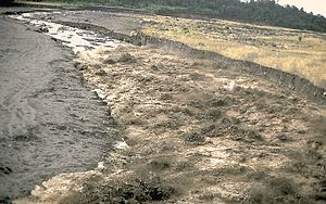 Santa María (volcano) - A hot lahar rushes down a river valley near El Palmar in 1989