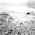 Humboldt Glacier, Calving Terminus, July 18, 1964 (GLACIERS 1685).jpg