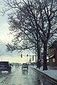 IL38wRoad-SnowyAfternoonTree (40888183382).jpg
