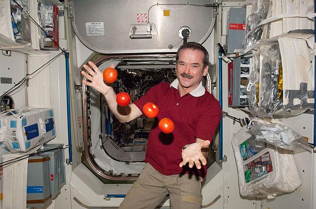 Космические помидоры на случай неудачи.