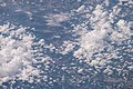 ISS047-E-147025 - View of Earth.jpg