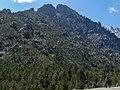 Ian scoping for Lammergeier at Restonica Gorge (35511174221).jpg
