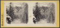 Ice and snow scene in the Catskills, by E. & H.T. Anthony (Firm) 10.png