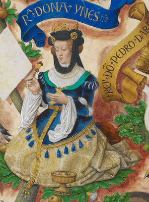 Agnes of Aquitaine, Queen of Aragon - Agnes of Aquitaine, taken from Genealogia dos Reis de Portugal by Antonio de Hollanda.