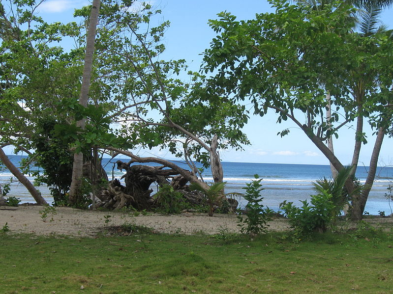 File:Indonesia (New Guinea Island)(30).jpg