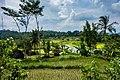 Indonesia - Yogyakarta (26737299882).jpg