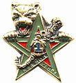 Insigne de la 1re Compagnie de combat.jpg