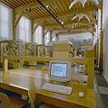 Interieur, overzicht glazen vitrines met opgezette vogels - Leiden - 20338223 - RCE.jpg
