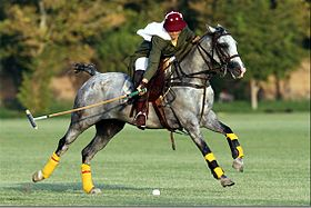 Iranian girl polo player.jpg c349b821807dd