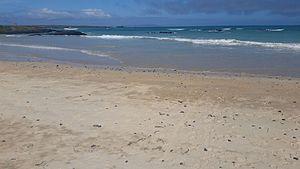 Santa Fe Island - Isla Santa Fe as seen from Playa el Garrapatero, Isla Santa Cruz