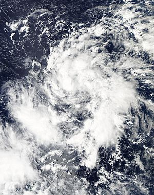 Meteorological history of Typhoon Haiyan - Haiyan becoming organized as a tropical depression on November 3