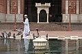 Jama Masjid, Pool, Delhi, India.jpg