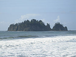 James Island from the beach at La Push