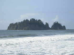 "<a href=""http://search.lycos.com/web/?_z=0&q=%22James%20Island%20%28Washington%29%22"">James Island</a> from the beach at La Push"